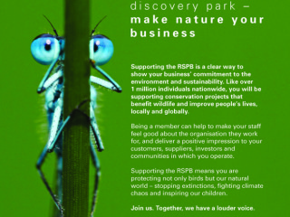 RSPB radio and national print ads